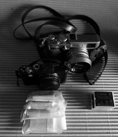 _DSF1449_X100 Leica