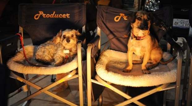 Producers on Set-2